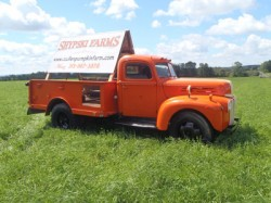 Cullen Pumpkin Farm