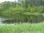 Schenectady County Forest Preserve
