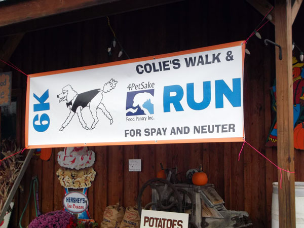 Colie's Run/Walk 6K 2016 Race Results
