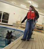 SUNY Morrisville Equine Rehabilitation Center (ERC)